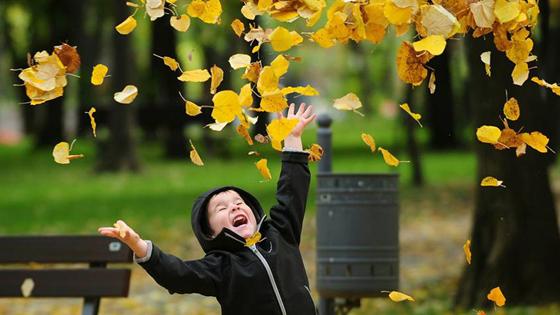 Fall Weather.