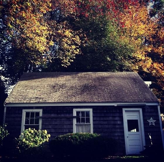 Autumnal.