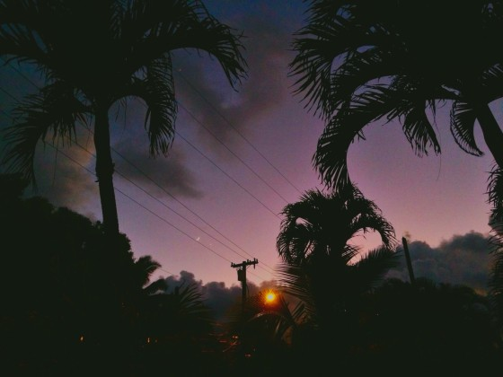 hawaii - sachiko