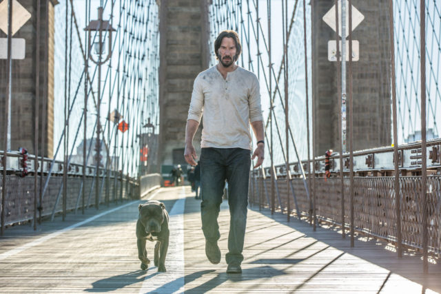 John Wick: Chapter 2 dog