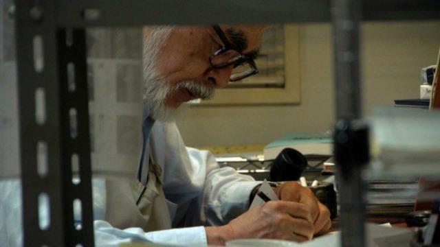 studio ghibli reopens hayao miyazaki unretires