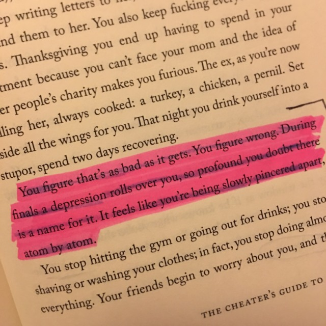 the cheater's guide to love, junot diaz