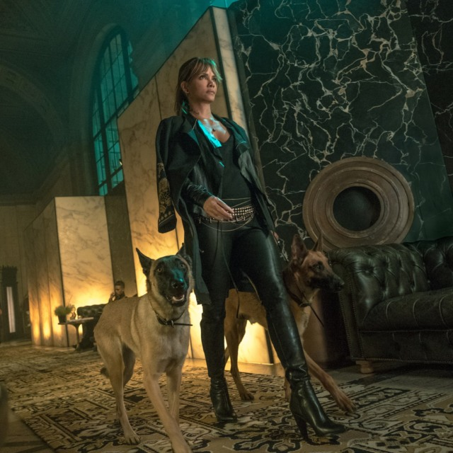 john wick 3 halle berry dogs