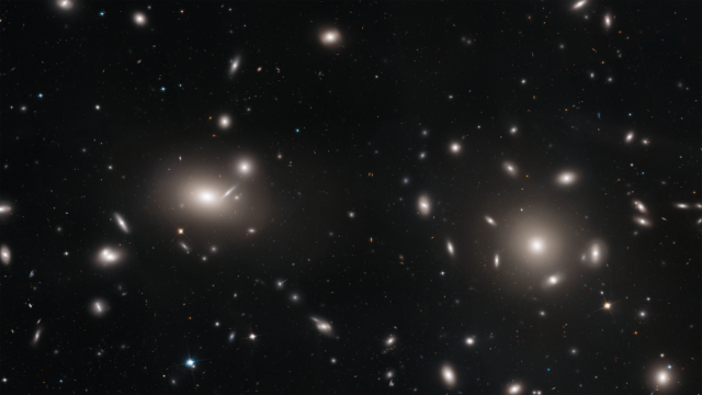 This Hubble Space Telescope mosaic is of a portion of the immense Coma cluster of over 1,000 galaxies, located 300 million light-years from Earth. Hubble's incredible sharpness was used to conduct a comprehensive census of the cluster's most diminutive members: a whopping 22,426 globular star clusters. Among the earliest homesteaders of the universe, globular star clusters are snow-globe-shaped islands of several hundred thousand ancient stars. The survey found the globular clusters scattered in the space between the galaxies. They have been orphaned from their home galaxies through galaxy tidal interactions within the bustling cluster. Astronomers will use the globular cluster field for mapping the distribution of matter and dark matter in the Coma galaxy cluster. The study, published in the November 9, 2018, issue of The Astrophysical Journal, will allow for astronomers to use the globular cluster field to map the distribution of matter and dark matter in the Coma galaxy cluster.