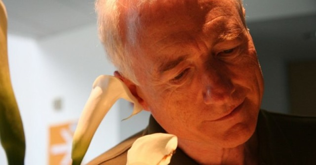 larry tesler copy paste dies 74